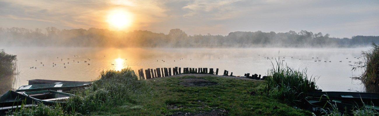 Nowe domy Poznań Jezioro Kierskie Osiedle Białe 1