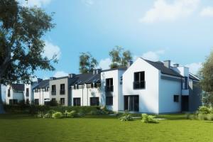 Domy w zabudowie szeregowej Osiedle Białe AOA Deweloper - Tył